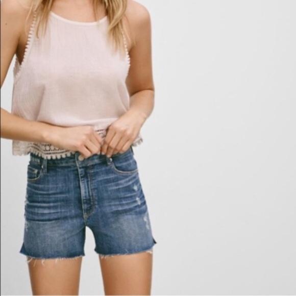 Aritzia Pants - Aritzia Paradise Mine Super High Rise Jean Shorts